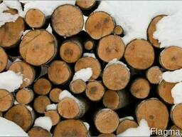 Лес кругляк, пиловочник, бревно, сухостой