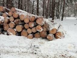 Лес кругляк пиловочник хвойных пород 26 и более с доставкой.