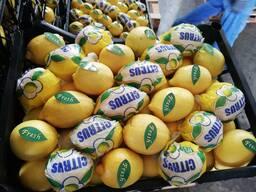Лимоны из солнечной Турции