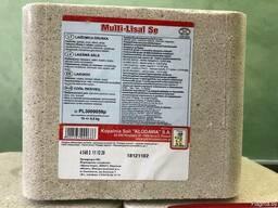 Лизунец- соленой минерализированный MULTI-LISAL SE