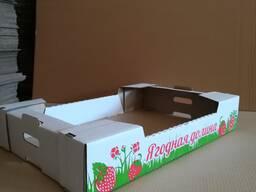 Лотки, ящики, коробки для клубники, черники и других ягод