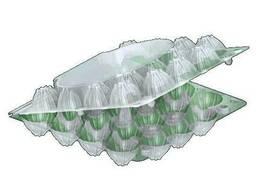 Лоток для перепелиных яиц №1