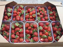 Лоток из гофрокартона под ягоды