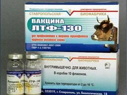 Лтф-130 вакцина