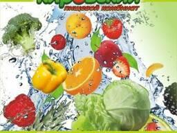 Маринады, консервы овощные, соки и нектары