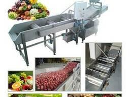 Машина для мойки фруктов