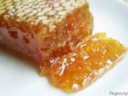 Мед, перга, пыльца пчелиная