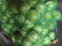 Капуста и др. свежие овощи