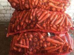 Морковь продовольственная РБ