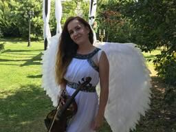 Музыкант на свадьбу, праздник