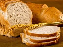 """Натуральная закваска """"Комплекс Пшеничный"""" для хлеба"""