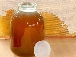Натуральный мед - фото 1