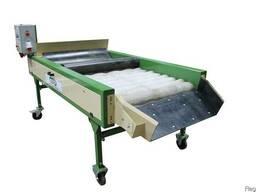 Оборудование машина для сухой очистки картофеля, овощей, лук