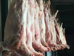 Оптом Мясо Баранина Говядина Свинина. - фото 6