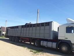Перевозка скота