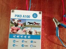 Пико 100