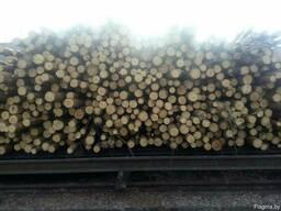 Пиловочный лесоматериал