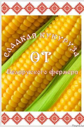 Замороженные початки сладкой кукурузы