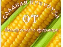 Початки сладкой кукурузы