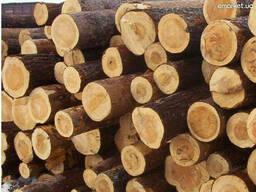 Подтоварник — тонкомерный круглый лесоматериал диаметром. ..