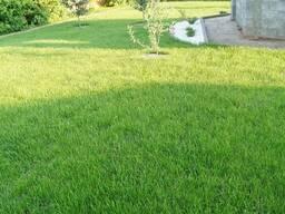 Покос травы, бурьяна; Стрижка газона. Минск, Минский район - фото 2