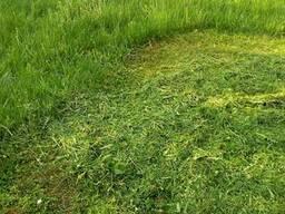 Покос травы. Стрижка газона