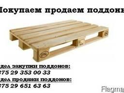 Покупаем продаем поддоны 1200х800, 1200х1000, 1200х1200