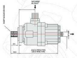 Поршневой насос 100 л/мин (Bi-rotational) моноблочный