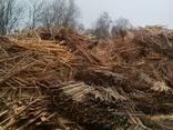Требуются услуги по дроблению сырья из деревообработки - фото 2