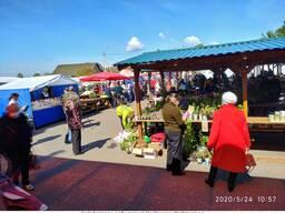Продам действующий городской рынок в городе Горки, Беларусь