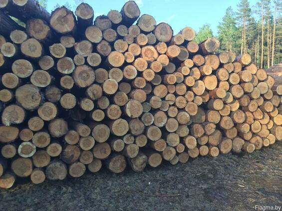 Продам лес кругляк диаметр от 14 и более цена от 45