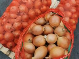 Продам лук репчатый урожай 2020