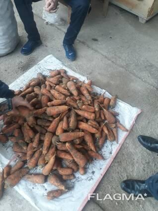 Продам Морковь Казахстанская возможно доставка
