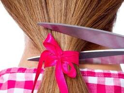 Продать волосы. Купим волосы. Скупка волос. Цена волос. РБ.