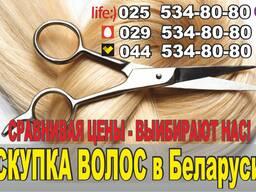Продать волосы в Минске