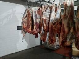 Производитель предлагает говядину