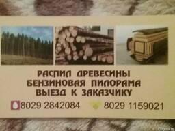 Распил древесины с выездом