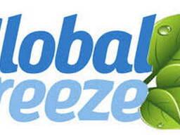 Ремонт рефрижераторов Глобал Фриз (Global Freeze)