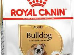 Royal Canin Bulldog Adult - корм для английских бульдогов с 12 месяцев.