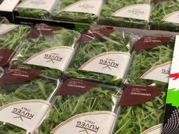 Руккола шпинат салаты в ассортименте
