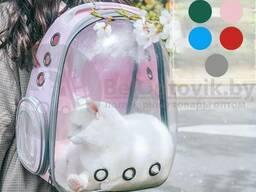 Рюкзак переноска с Прозрачным окном для мелких пород собак, кошек Серая