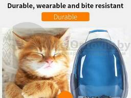 Рюкзак переноска с Прозрачным окном для мелких пород собак, кошек Синяя