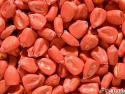 Семена гибридов кукурузы Краснодарский 194 МВ, F-I