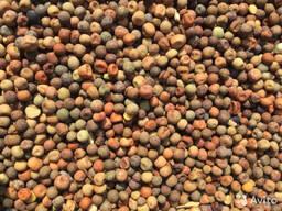 Семена гороха полевого (пелюшка) сорт Зарянка