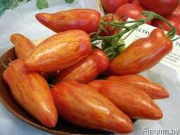 Семена томата ''Банан пестрый''