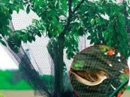 Сетка от птиц 2х10м