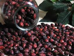 Шиповник сушеный плоды 150 рублей мешок 10кг