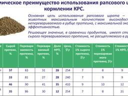 Шрот рапсовый тостированный производства РБ