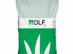 Семена кормовых трав Люцерны DLF (Нидерланды)