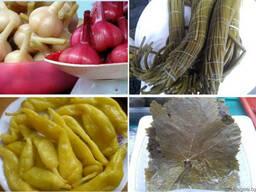 Овощи соленые маринованные